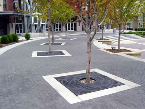 Recycled Tree Grates from OCC Outdoors